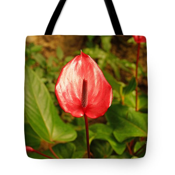 Red Bloom Tote Bag