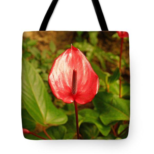 Red Bloom Tote Bag by J Jaiam