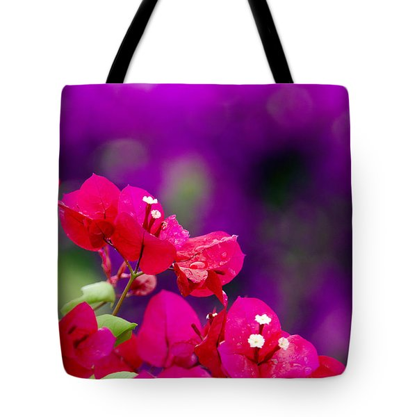 Red Bougainvillaeas Tote Bag by Ron Dahlquist