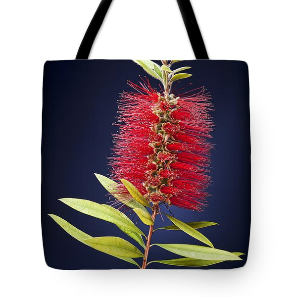 Red Brush Tote Bag by Kelley King