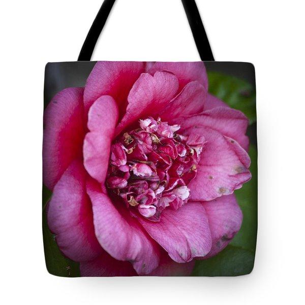 Red Camellia Tote Bag by Teresa Mucha