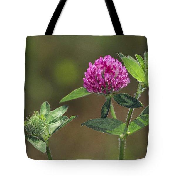 Red Clover Blossom Tote Bag
