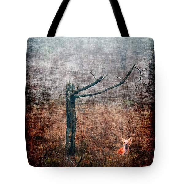 Tote Bag featuring the photograph Red Fox Under Tree by Dan Friend