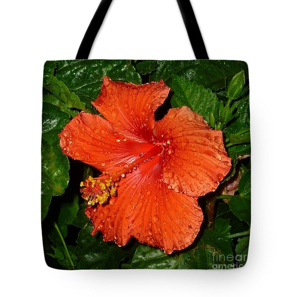 Tote Bag featuring the photograph Red Hibiscus After The Rain by Renee Trenholm