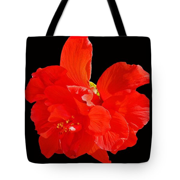 Red Hibiscus Tote Bag by Cindy Manero