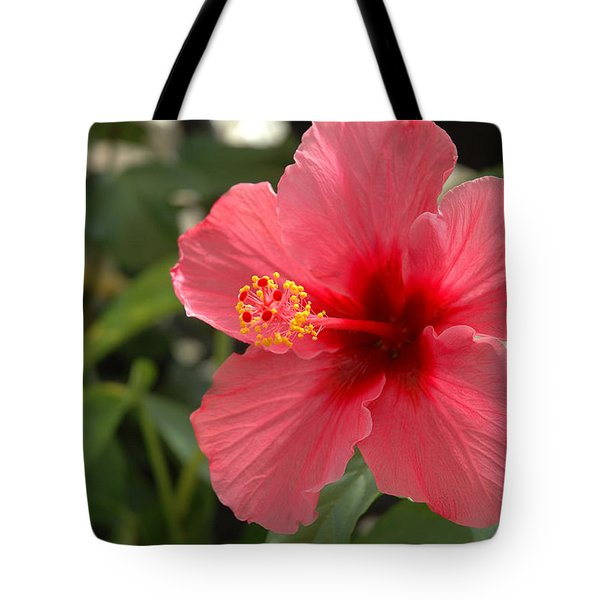 Red Hibiscus Tote Bag by Jerry McElroy