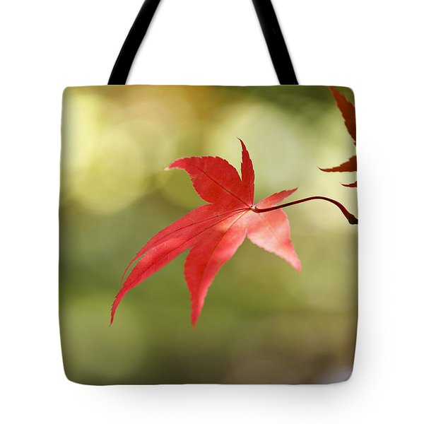 Red Leaf. Tote Bag by Clare Bambers