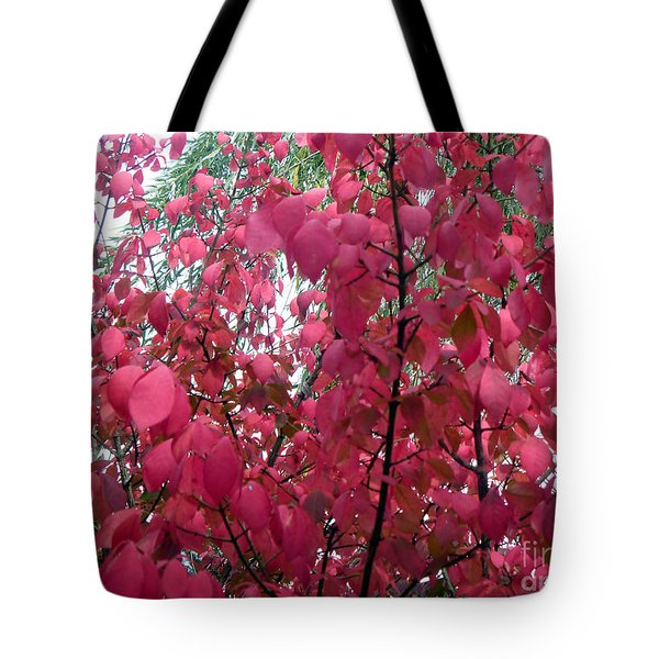 Red Leaves I Tote Bag by Alys Caviness-Gober