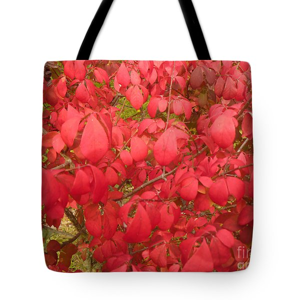 Red Leaves Iv Tote Bag by Alys Caviness-Gober