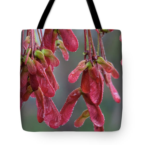 Red Maple Keys With Raindrops Tote Bag