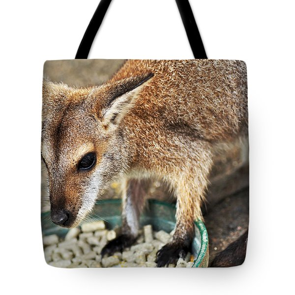 Red-necked Wallaby Tote Bag by Kaye Menner