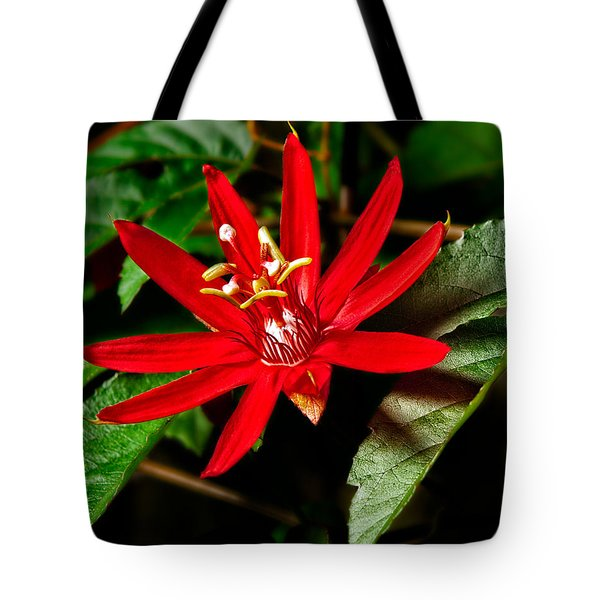 Red Passion Tote Bag by Christopher Holmes