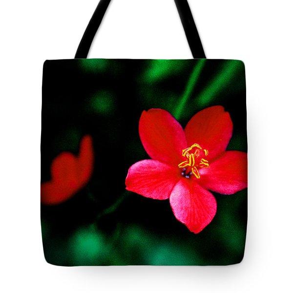 Red Petaled Dream Tote Bag