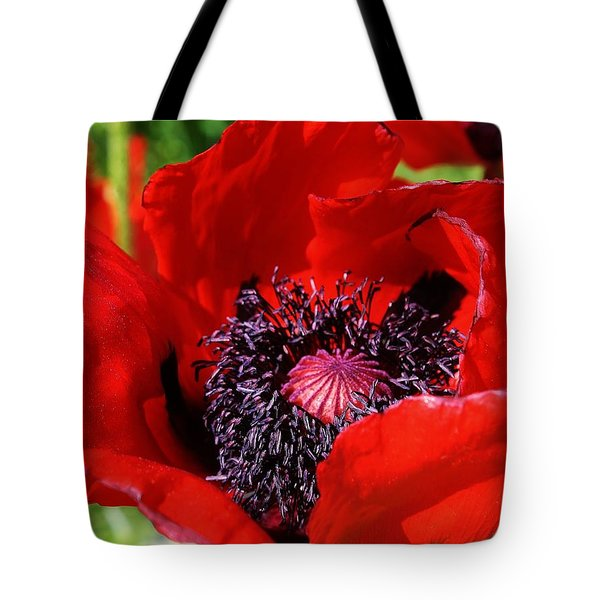 Red Poppy Close Up Tote Bag