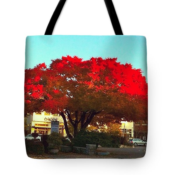 Red Red Maple Tree - Lake Oswego Or Tote Bag