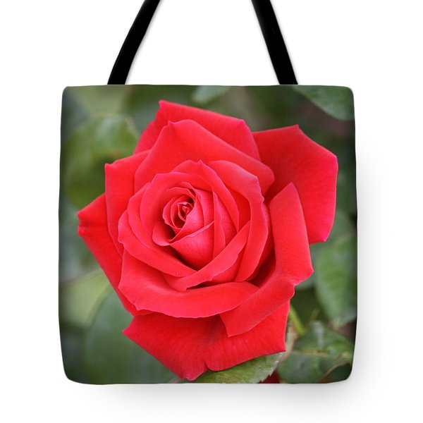 Tote Bag featuring the photograph Red Rose by Donna  Smith