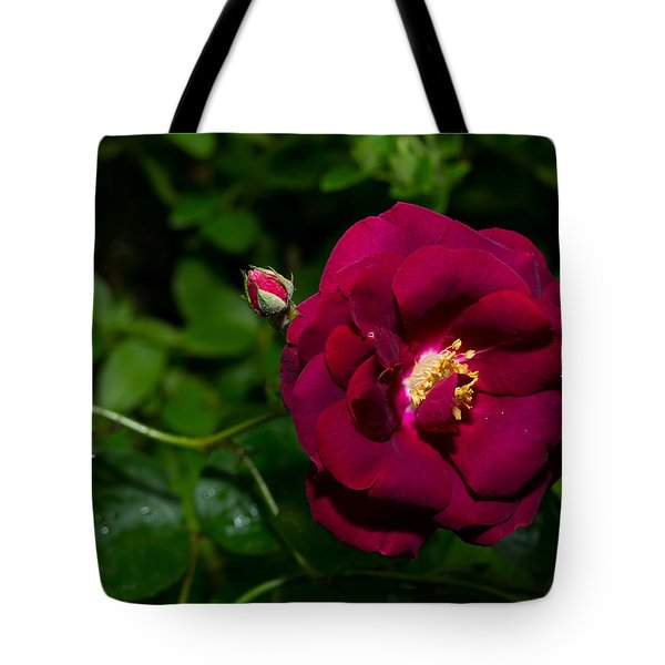 Red Rose In The Wild Tote Bag