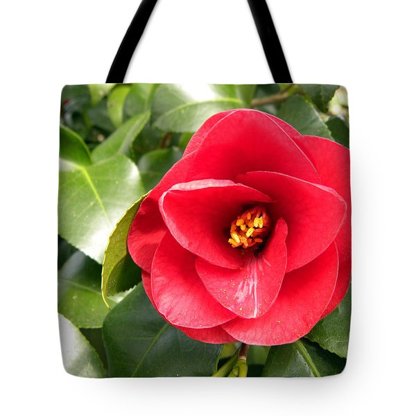 Red Rose Knock Out Tote Bag by Sandi OReilly