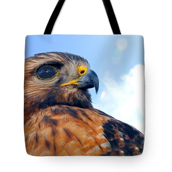 Tote Bag featuring the photograph Red Shouldered Hawk Portrait by Dan Friend