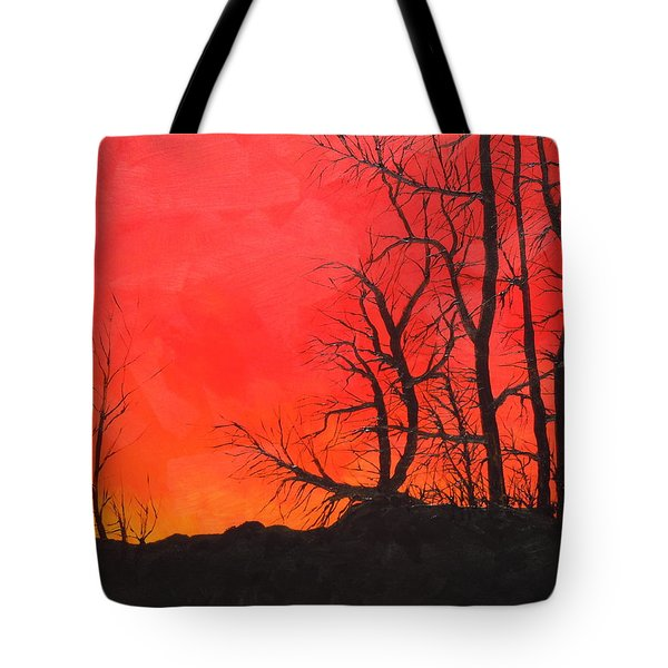 Red Sky  Tote Bag by Dan Whittemore