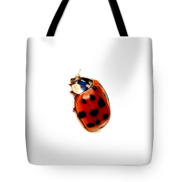 Tote Bag featuring the photograph Red Spotted Ladbug White Background by Tracie Kaska