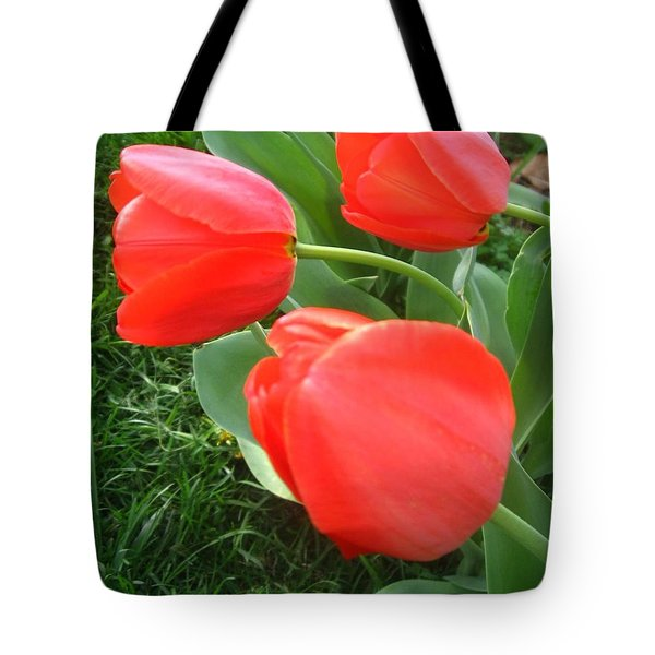 Red Spring Tulips Tote Bag