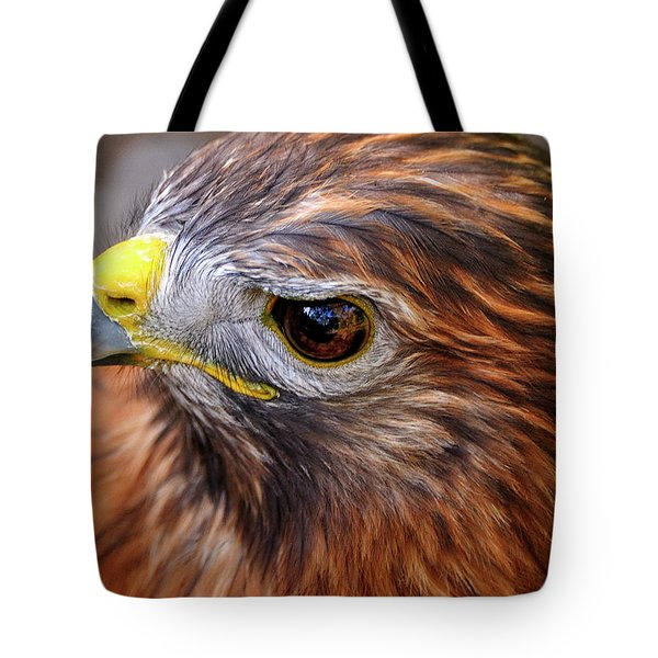Red-tailed Hawk Close Up Tote Bag