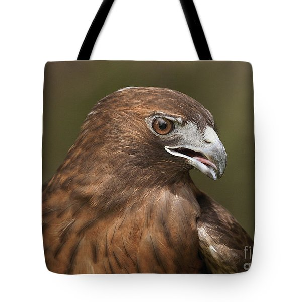 Tote Bag featuring the photograph Red-tailed Hawk by Doug Herr