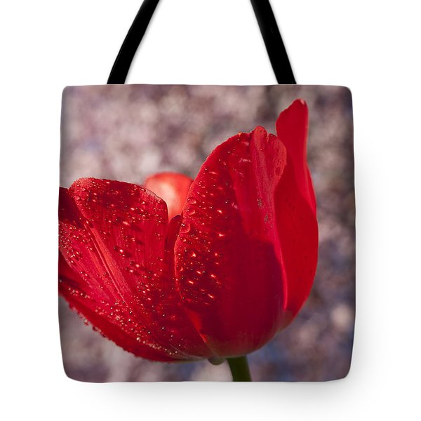 Red Tulip And Cherry Tree Tote Bag by Garry Gay