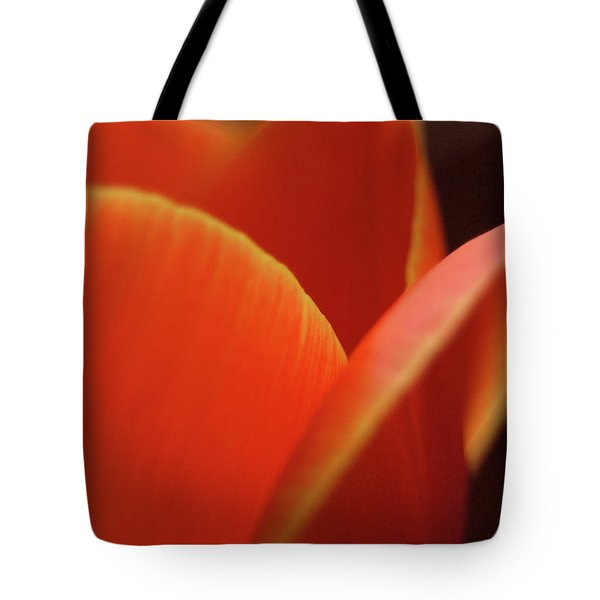 Tote Bag featuring the photograph Red Tulip by Jeannette Hunt