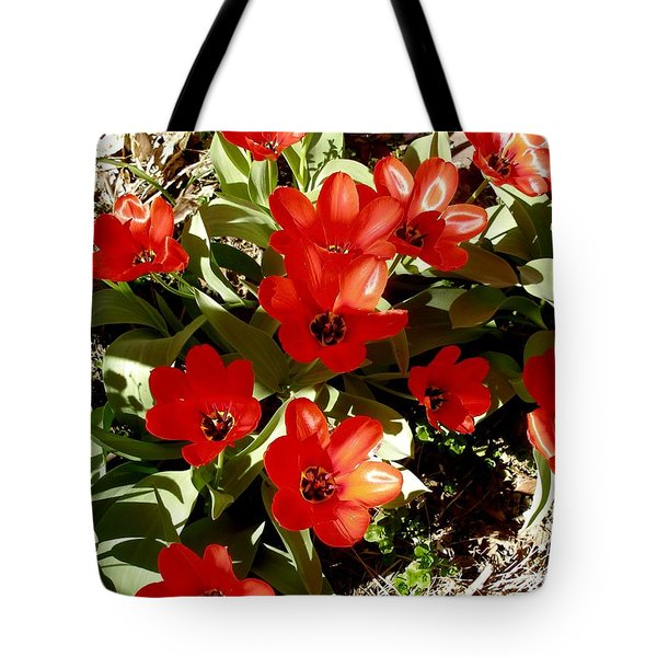 Tote Bag featuring the photograph Red Tulips by David Pantuso