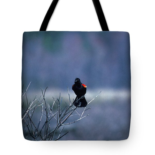 Tote Bag featuring the photograph Red-wings Morning Call 10o by Gerry Gantt