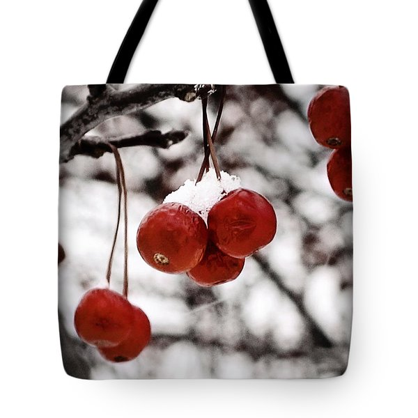 Red Winter Berries Tote Bag