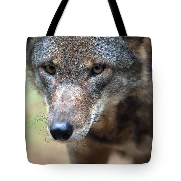 Red Wolf Closeup Tote Bag by Karol Livote