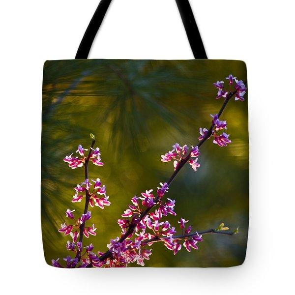 Redbud Tote Bag by Rob Travis