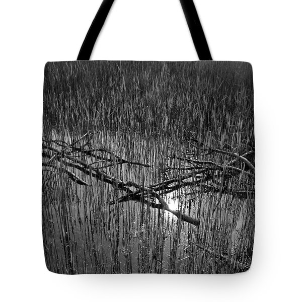 Reeds And Tree Branches Tote Bag by David Pyatt