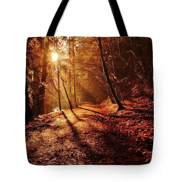 Reelig Sun Tote Bag