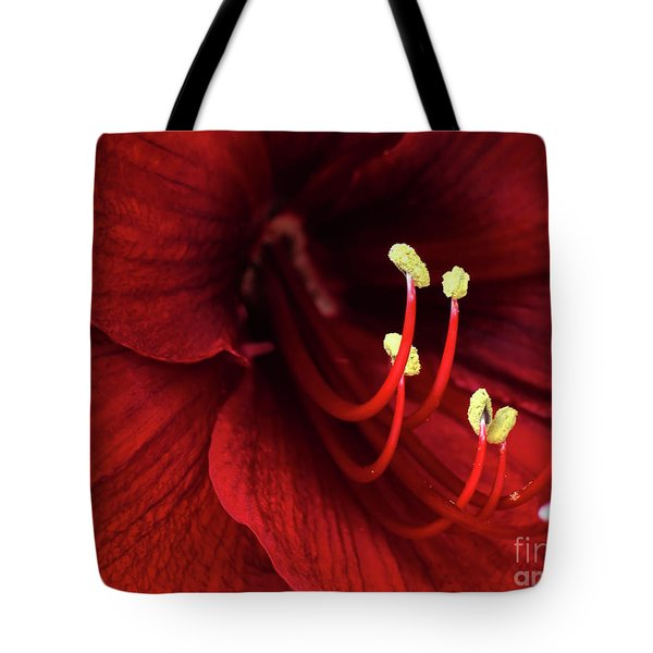Ref Lily Tote Bag by Carlos Caetano