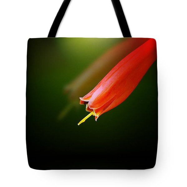 Reflection Tote Bag by Judi Bagwell