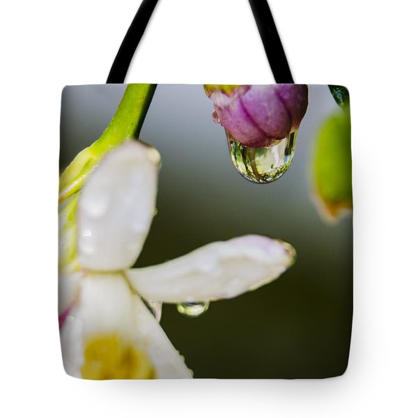 Reflection Tote Bag by Marta Cavazos-Hernandez