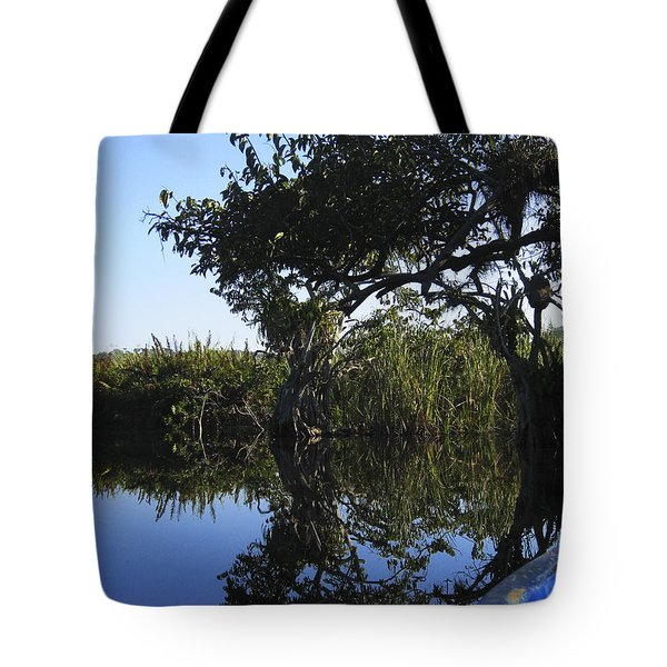 Reflection Of Arched Branches Tote Bag by Anne Mott