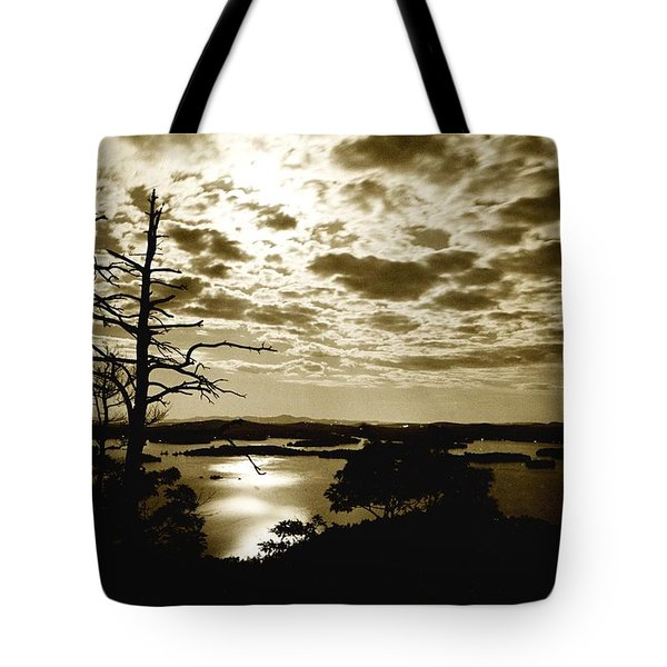 Reflection Of Moonlight On Squam Tote Bag by Rick Frost