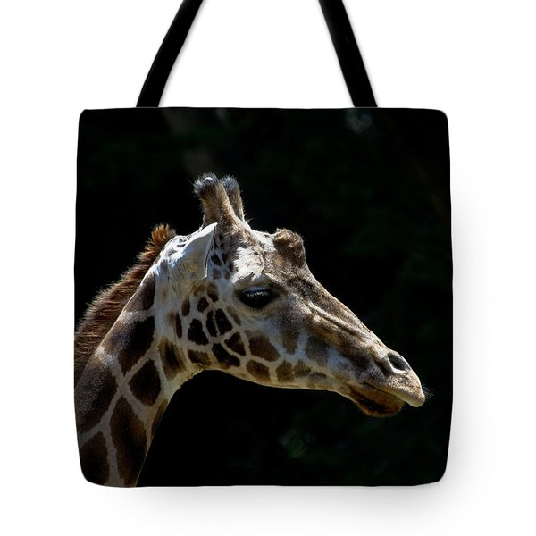 Tote Bag featuring the photograph Reflection Time by Roger Mullenhour