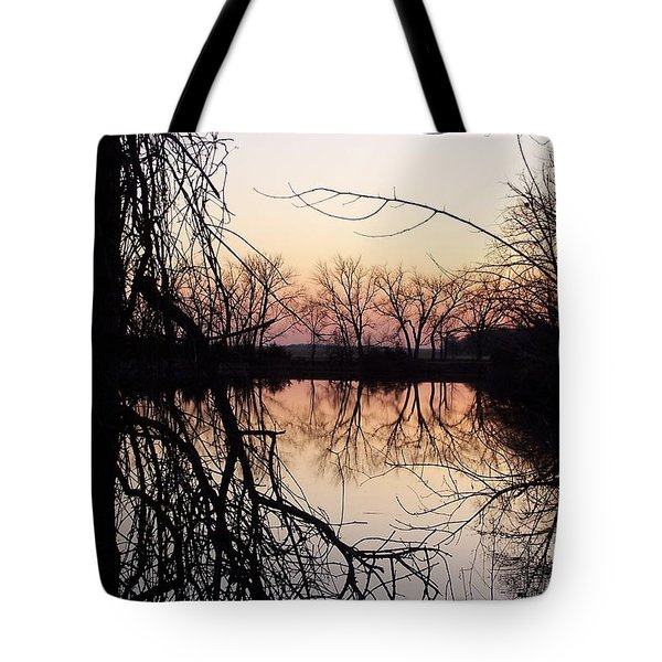 Reflections Tote Bag by Dorrene BrownButterfield