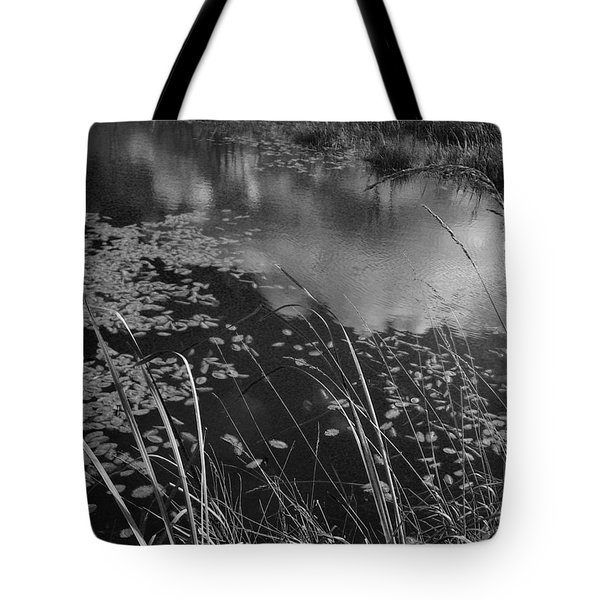Reflections In The Pond Tote Bag by Kathleen Grace