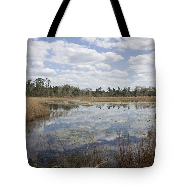 Reflections Tote Bag by Lynn Palmer