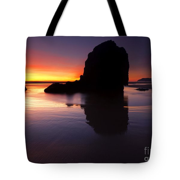 Reflections Of The Tides Tote Bag by Mike  Dawson