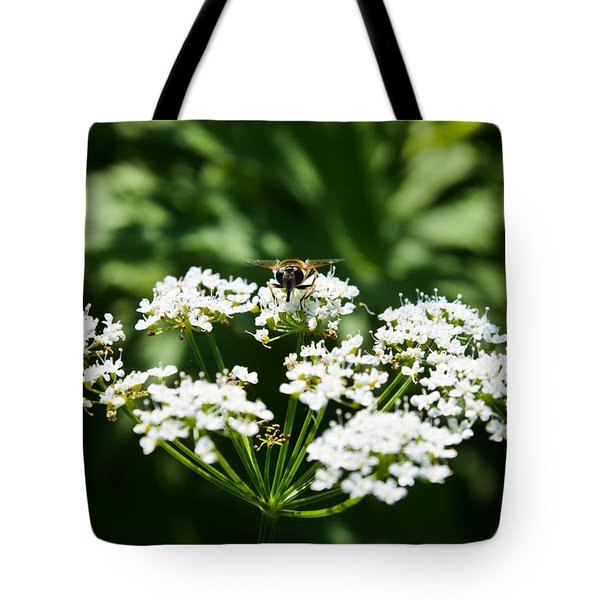Refractions Tote Bag