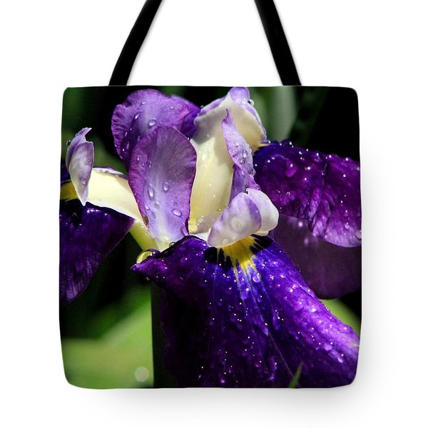 Refreshed Tote Bag