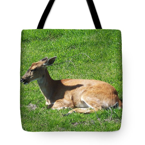 Relaxin Tote Bag by Aimee L Maher Photography and Art Visit ALMGallerydotcom